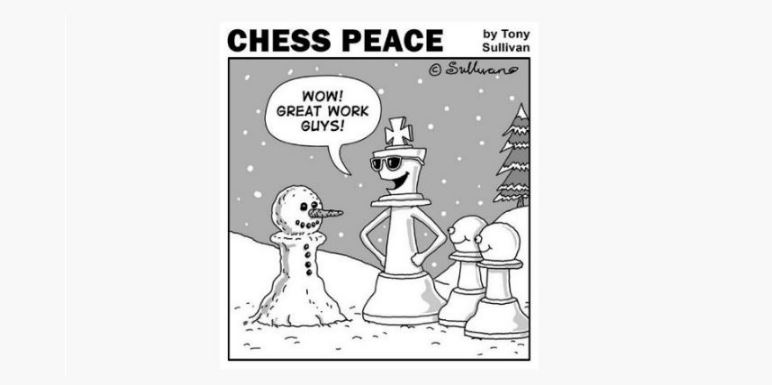 """A Snow Pawn!"" -from the new ""CHESS PEACE"" book"